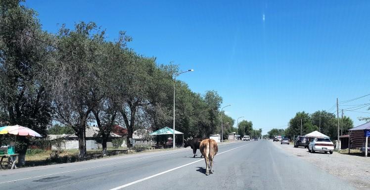 Elämää kylässä ja tiellä