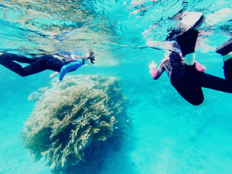 Lapset ja korallia, EIlat, Israel